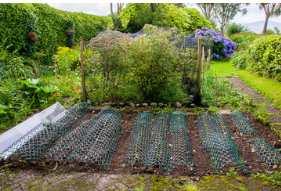 come fare un orto
